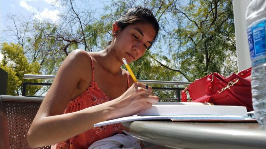 A Mt. SAC student studies from their textbook. Photo by Melody Waintal/SAC Media.