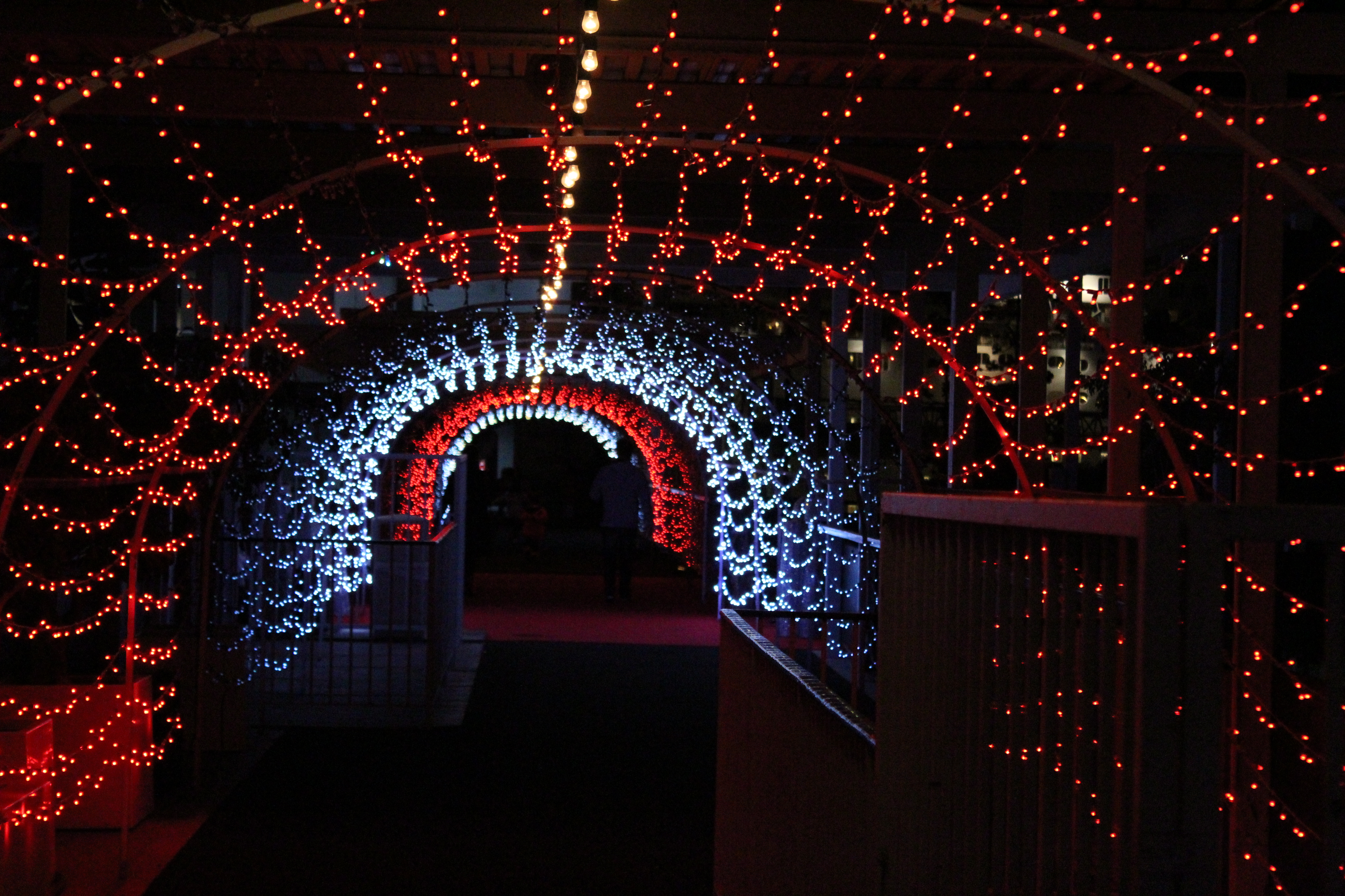 Tunnel of Lights at The Queen Mary Christmas