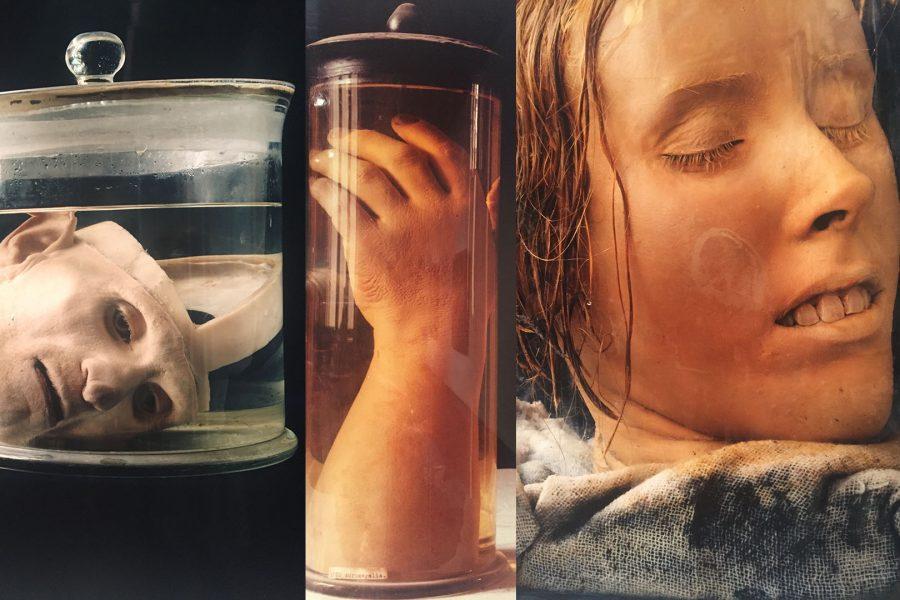 Cal+State+Fullerton%E2%80%99s+deadly+art+exhibit