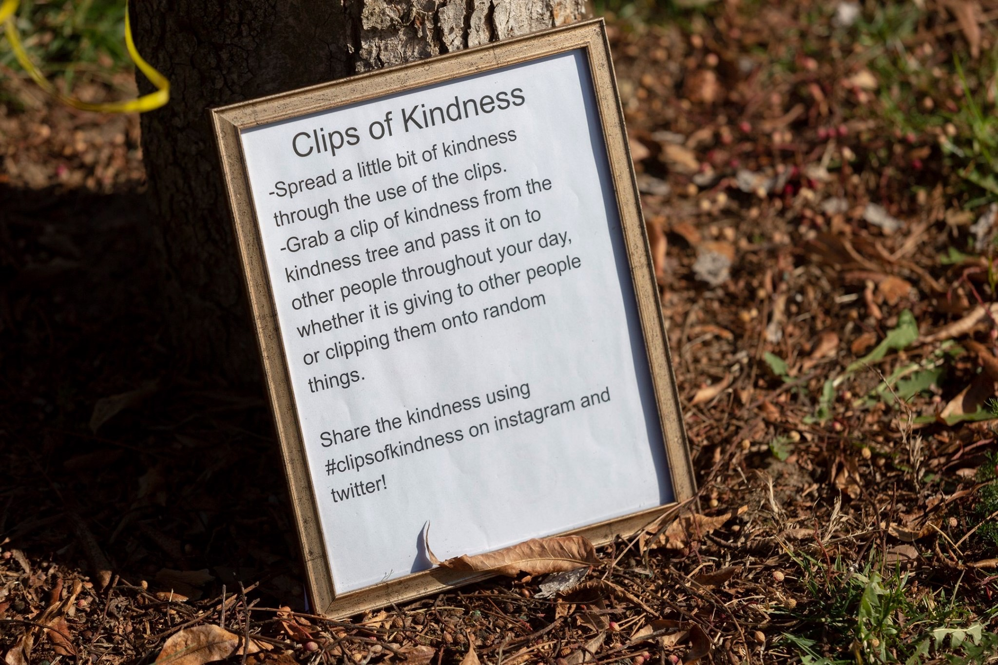Clips of Kindness 2