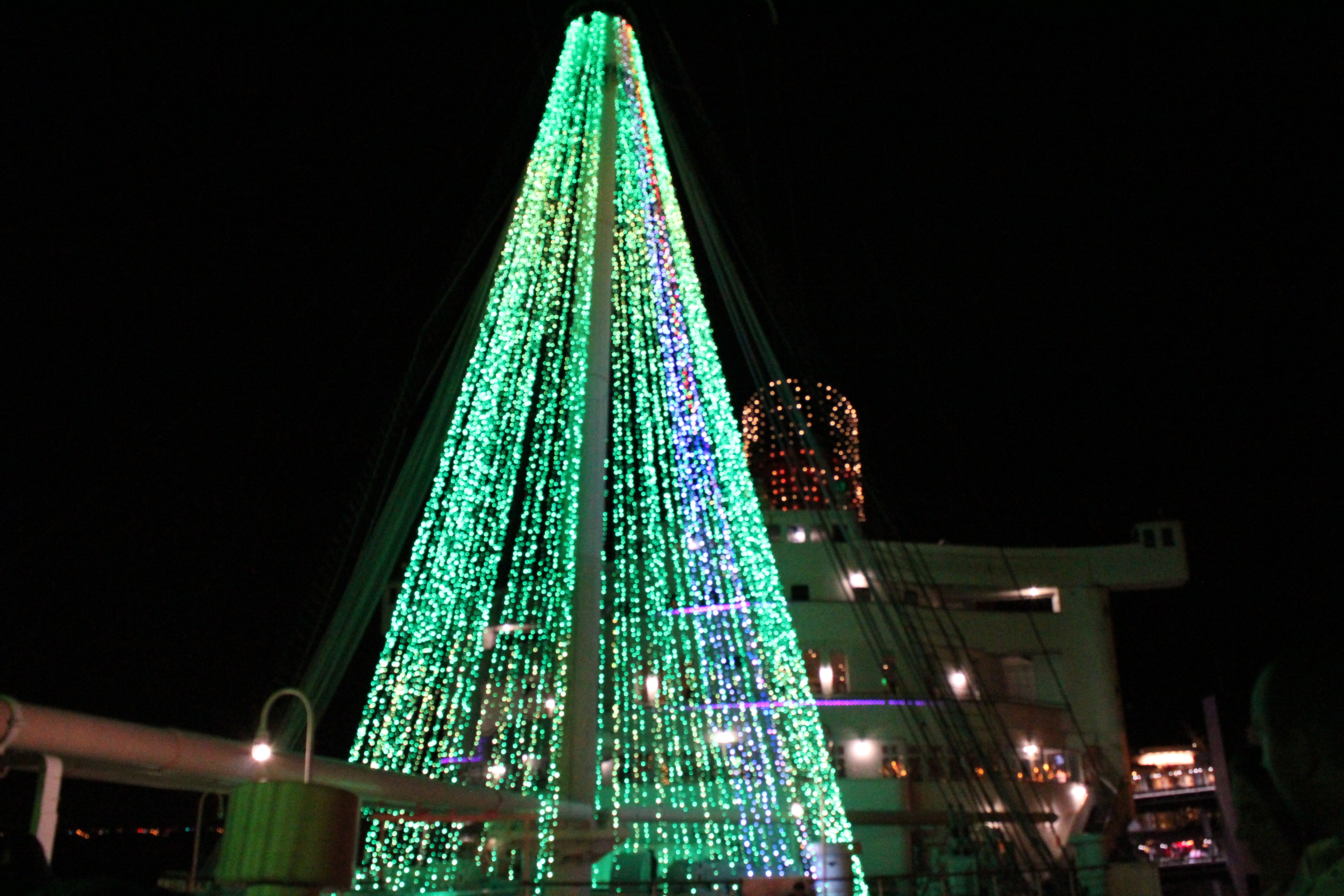 Christmas Tree at The Queen Mary Christmas