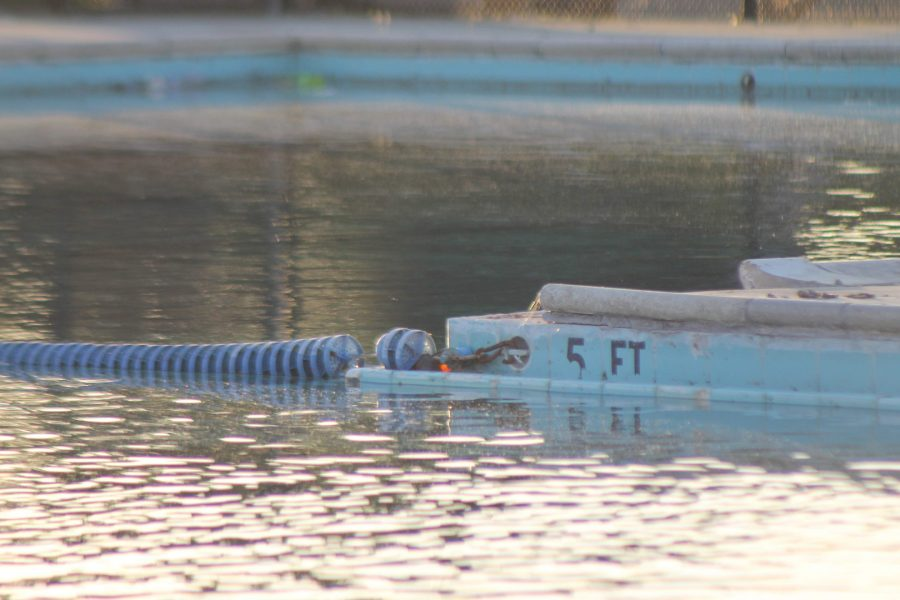 A closer look into the La Puente High School pool's waters on Oct. 24 before construction. Photo credit: Destany Anderson/SAC.Media.
