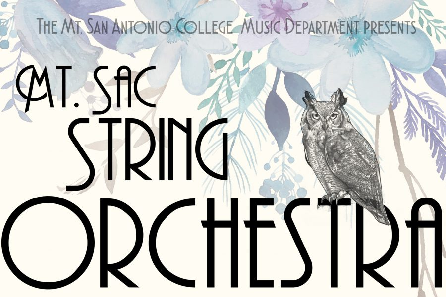 String Orchestra Plays at Spring Concert