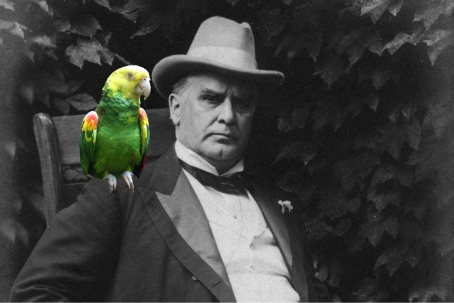 President William McKinley with a superimposed parrot for representation purposes. Photo by Monica Inouye / SACmedia.